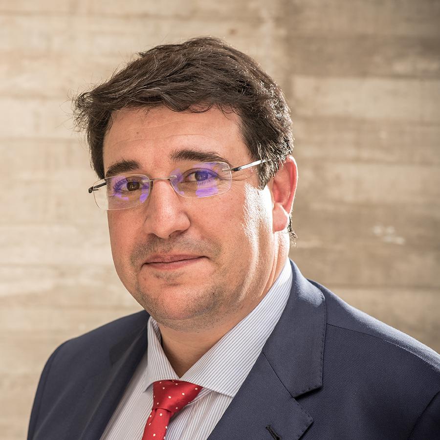 Luis Marigomez